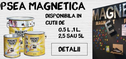 Vopsea magnetica MagnetPaint - o multime de aplicatii