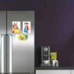 Suveniruri sau alte insemne magnetice, pe usa frigiderului tau!