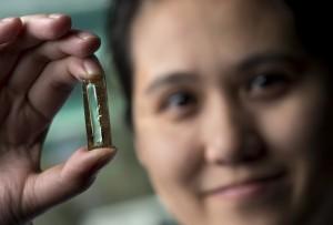 Nanowire intr-o capsula de dioxit de  magan.